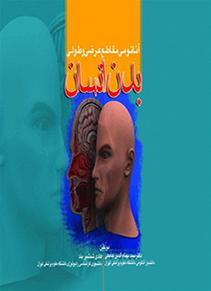 آناتومی مقاطع عرضی و طولی بدن انسان